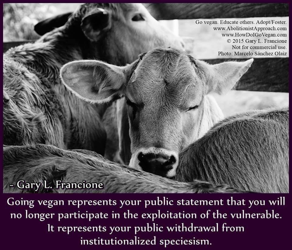 Animal Cruelty Quotes Vegan Quotesgary Francione